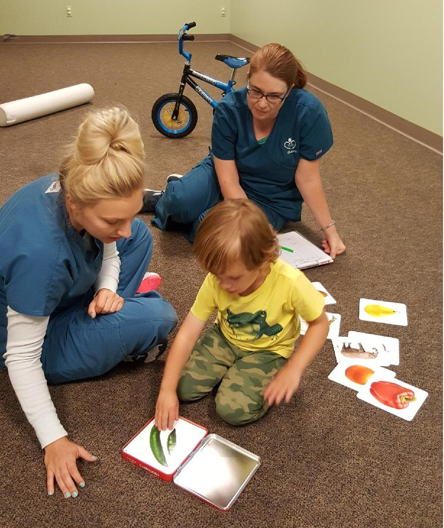 Speech and ABA Therapists working with young boy
